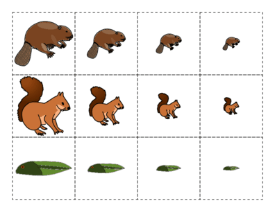 Beavers Largest to Smallest Cutouts