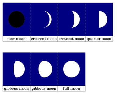 Phases of the Moon Cards